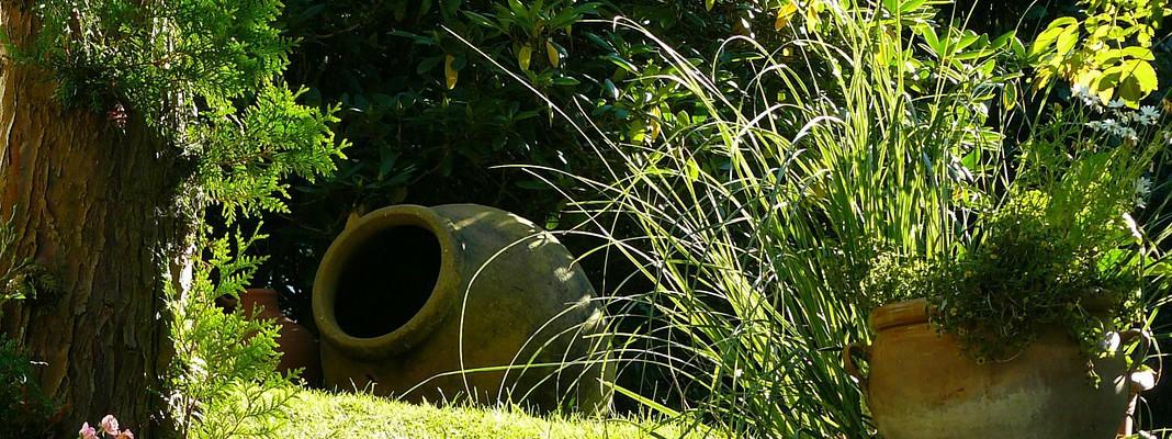 Garden landscape design: the art of planning a green space