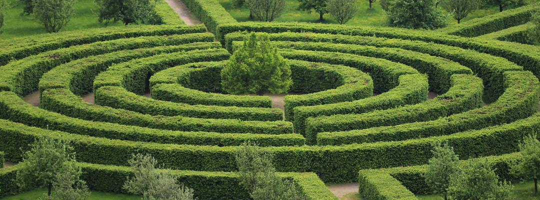 The garden maze: combine fun and beauty!